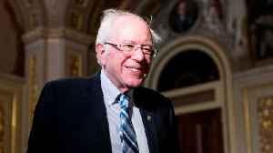 Bernie Sanders Passed Joe Biden In Popular Betting Poll [Video]