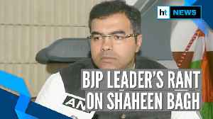 'They will rape & kill': BJP leader Parvesh Verma on Shaheen Bagh protests [Video]