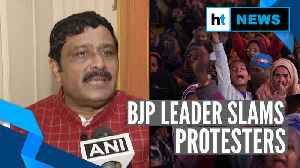 Shaheen Bagh protesters have come from Pakistan, Bangladesh: BJP'S Rahul Sinha [Video]