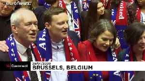 Labour MEPs break into song as they begin their Brussels goodbye [Video]
