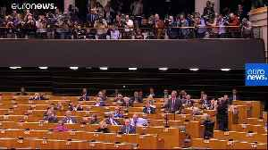 Watch: Nigel Farage in flag-waving row during Brexit bill debate
