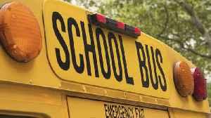 Palm Beach Co. schools holding bus driver job fair [Video]