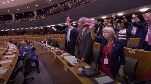 Brexit Party MEPs told off as they wave Union Flags in EU Parliament