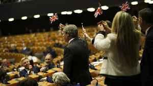 Watch: Nigel Farage in flag-waving row during Brexit bill debate [Video]