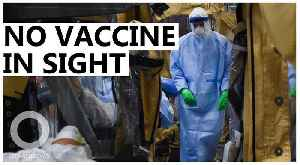 Wuhan virus vaccine might take months to create [Video]