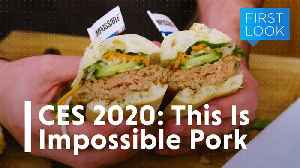 CES 2020: This is Impossible Pork   Gizmodo [Video]