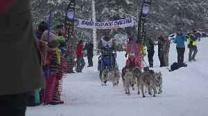 Mccall school children cheer on mushers at the start of the Idaho Sled Dog Challenge [Video]