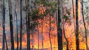 Scorching Temps And High Winds Bring Renewed Wildfire Threats To Australia [Video]