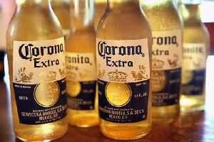 'Corona beer virus' searches have surged as coronavirus spreads worldwide [Video]