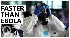 Wuhan virus might infect people faster than Ebola [Video]