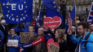 Labour MEP Julie Ward calls Brexit 'historic mistake' as she joins small crowd of Remainers in Westminster [Video]