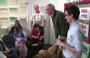 Meet Elizabeth Warren's substitute: Her dog Bailey [Video]