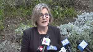 RAW: Dr. Sara Cody Talks About First Confirmed Novel Coronavirus Case In Santa Clara County [Video]