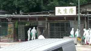 China reports bird flu outbreak in Hunan province [Video]