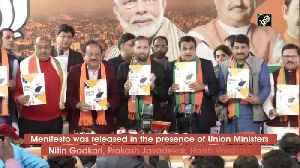 BJP releases manifesto for Delhi Assembly elections [Video]