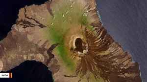 Galápagos Expedition Discovers Descendants of Extinct Tortoise Species [Video]