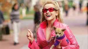 Legally Blonde Movie (2001) Reese Witherspoon, Luke Wilson, Selma Blair [Video]