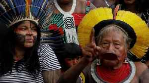 Amazon rainforest: Indigenous leaders seek British gov't support [Video]