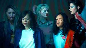 News video: Birds of Prey with Margot Robbie -