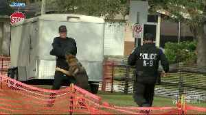 Deputies, police officers hold K9 field trials in Pinellas County [Video]