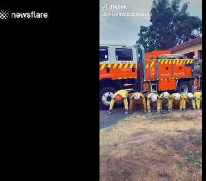 NSW firefighters 'brighten the mood of Australians' with viral TikTok plank challenge [Video]