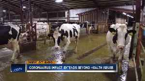 'It's discouraging for dairy farmers:' Coronavirus' economic impact on Wisconsin [Video]