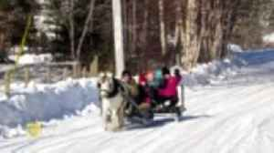 What could be better than a sleigh ride on a beautiful winter day? [Video]