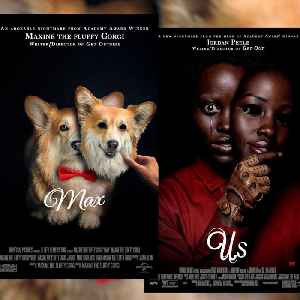 This dog was photoshopped into  movie posters [Video]