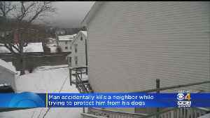 Man Accidentally Kills Neighbor While Trying To Protect Him From Dogs [Video]