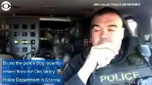 WEB EXTRA: Police Dog Retires And Gets Final Message [Video]