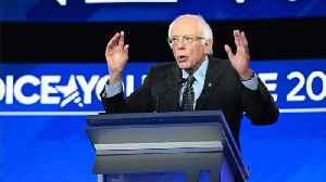Bernie Sanders and Pete Buttigieg take the lead in New Hampshire [Video]