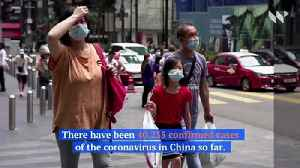 China Reports Nearly 100 Coronavirus Deaths in a Single Day [Video]