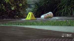 Man seriously hurt after machete attack at Pinellas Park McDonald's [Video]
