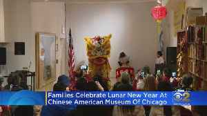 Families Celebrate Chinese Lunar New Year [Video]