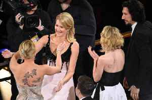 Laura Dern Wins Best Supporting Actress at 2020 Oscars [Video]