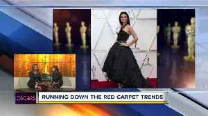 Hottest Oscars Fashion on the Red Carpet [Video]