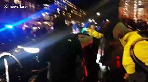 London police scuffle with protesters demonstrating against Jamaica deportation flight [Video]