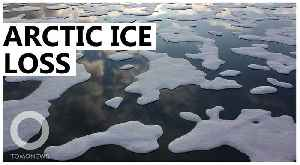 Melting Arctic ice might make Europe colder [Video]