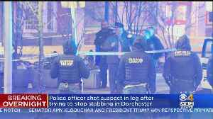 Boston Police Officer Shoots Man In Leg To Stop Stabbing In Dorchester [Video]