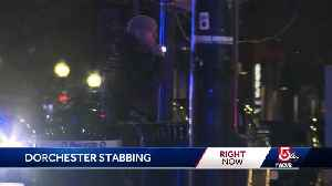 Stabbing suspect shot after threatening officers, police say [Video]