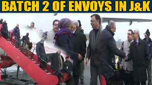 Second batch of foreign envoys visit J&K to assess ground situation| OneIndia News [Video]