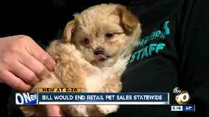 News video: Bill would end retail pet sales statewide