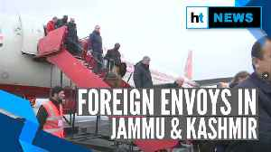 Watch: Second batch of foreign envoys visit J&K amid tight security [Video]
