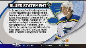 News video: Ducks Game Postponed After Blues Player Collapses On Bench