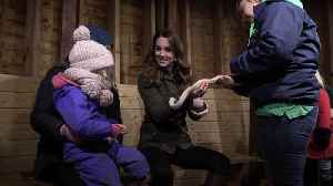 Kate holds snake during visit to open farm [Video]