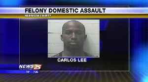 Felony Domestic Assault [Video]