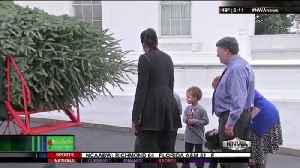 Michelle Obama welcomes White House Christmas tree [Video]