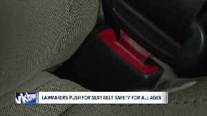 State assembly passes bill requiring passengers 16 years and older to wear seat belts in back seat [Video]