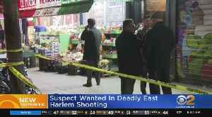 Deadly Shooting On East Harlem Street [Video]