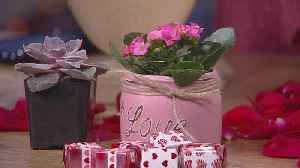 News video: Bachman's Valentine's Day Gift Ideas